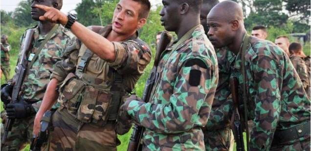 ForcesLicornes Copyright EMA / armée de Terre
